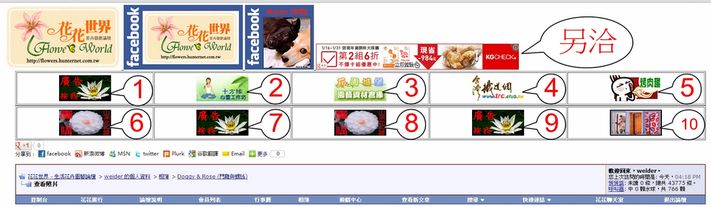 http://gnl.hunternet.com.tw/花花/pic/廣告位置-ad-1.jpg